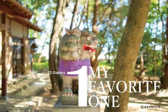 MY FAVORITE ONE – 単焦点倶楽部合同写真展vol.01 –
