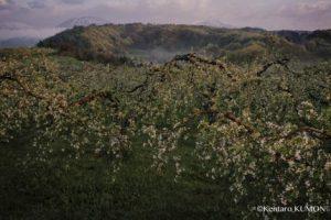 公文健太郎ゼミ 〜 第一線で活躍しているプロ写真家から制作プロセスを学ぶ 〜